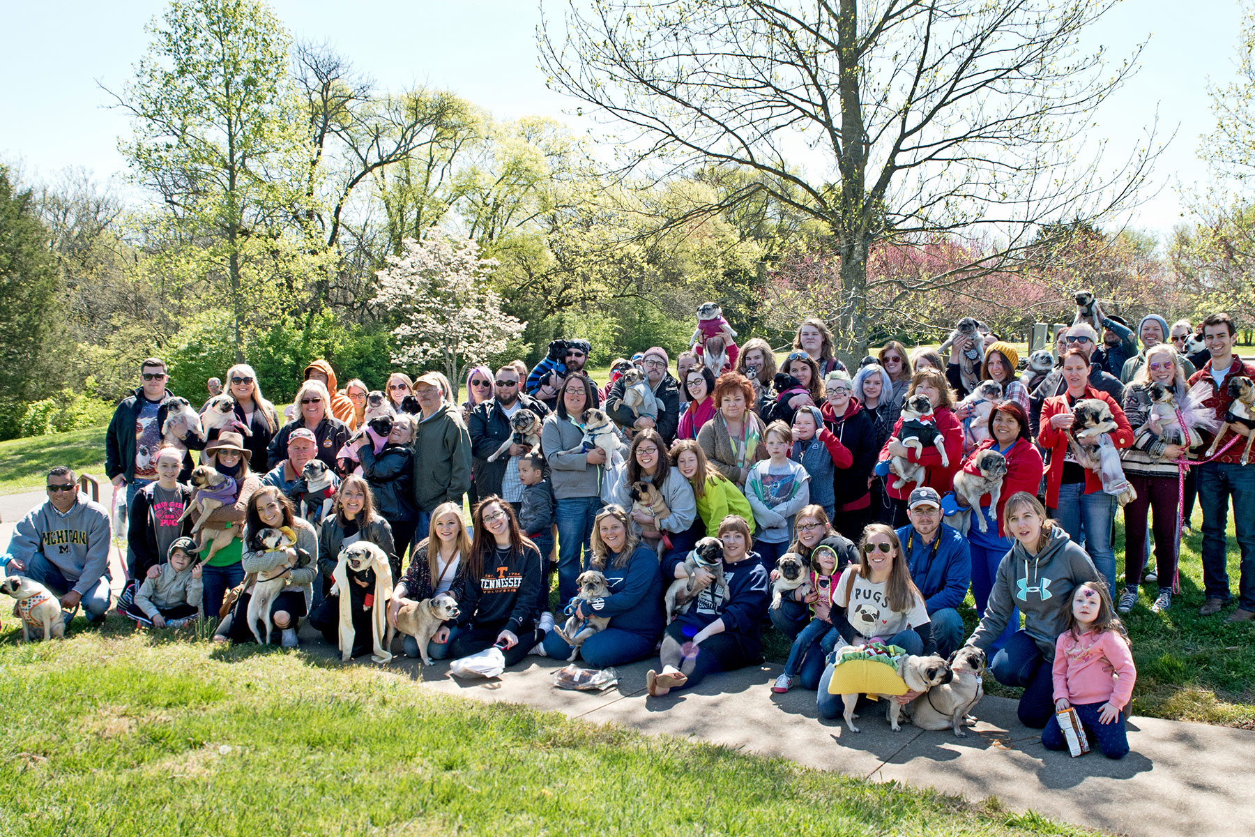 pug festival 2016 group shoot